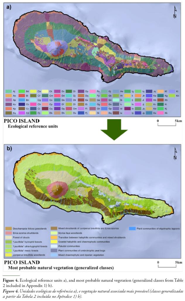 Island S Soil Morphology