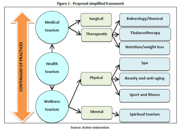 Health Tourism Conceptual Framework And Insights From The Case Of A